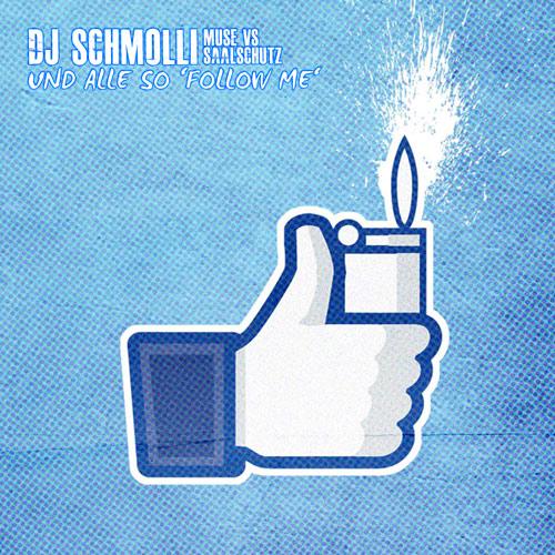 DJ Schmolli - Und alle so 'Follow Me' (500)