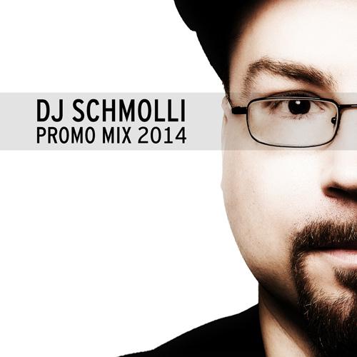 DJ Schmolli - Promo Mix 2014 (500)