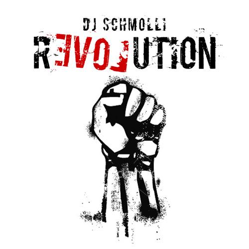 DJ Schmolli - Revolution (500)