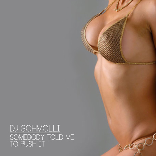 DJ Schmolli - Somebody Told Me To Push It (500)
