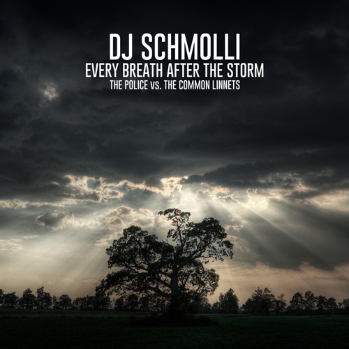 DJ Schmolli - Every Breath After The Storm (500)