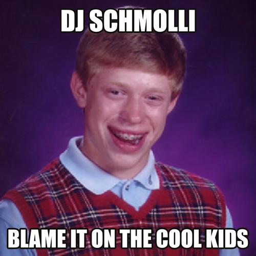 DJ Schmolli - Blame It On The Cool Kids (500)