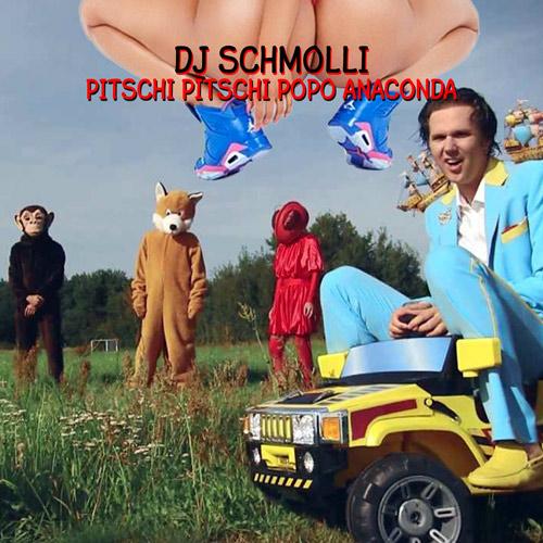 12-dj-schmolli-pitschi-pitschi-popo-anaconda-500