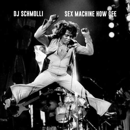 14-dj-schmolli-sex-machine-how-gee-500
