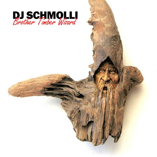 18-dj-schmolli-brother-timber-wizard-500